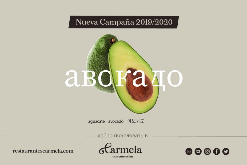 Nueva web y campaña Carmela
