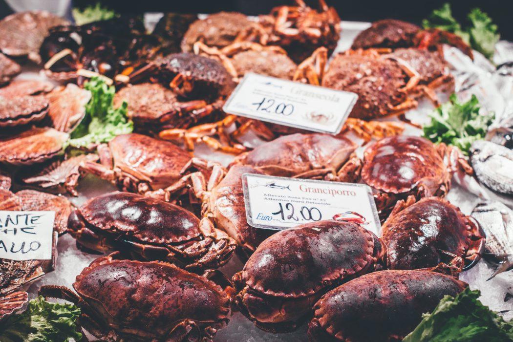 Recomendaciones de platos de pescado para Navidad