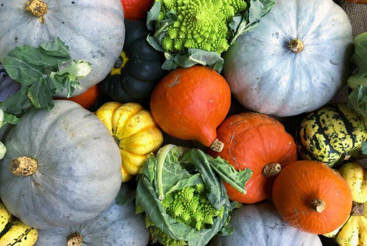 Gastronomía Sostenible - Producto Local
